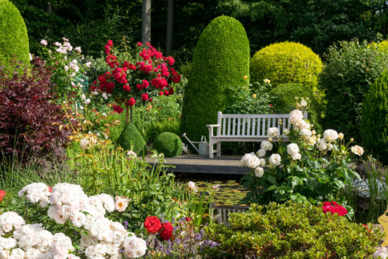 Garten mit Rosen